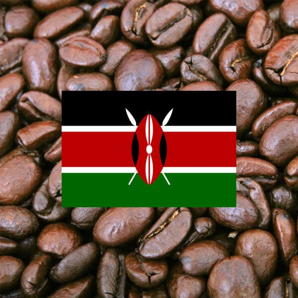 Kenya Nyeri Gachatha AB